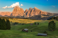 Seiser Alm with Langkofel Group in afternoon light, South Tyrol, Stock Photo