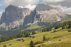 Seiser alm,South Tyrol,Italy Stock Image