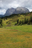 Seiser Alm Royalty Free Stock Image