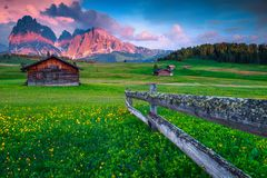 Free Seiser Alm Vacation Resort With Yellow Spring Flowers, Italy, Europe Royalty Free Stock Image - 140343986