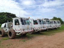 Seismic vibrator trucks vibroseis for land seismic survey for oil and gas exploration. In Thailand Royalty Free Stock Image