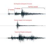 Seismogram graph set. Royalty Free Stock Photo