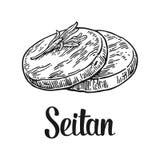 seitan Vector l'illustrazione incisa annata nera su fondo bianco Fotografia Stock