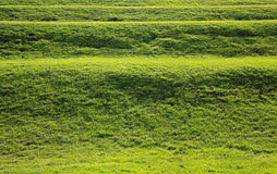 Seite des Hügels im Park Lizenzfreie Stockbilder