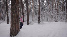 Seitenansicht der aktiven Frau mit dem Rucksack, der den Nordic geht in die Walddame im Ruhestand schnell tritt mit Skipfosten tu stock video
