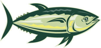 Seitenansicht der BluefinThunfische Stockfotos