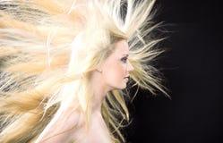 Seitenansicht der Frauen mit dem Fliegenhaar Stockbild
