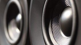 Seitenansicht des Audiosprechers zwei, der vom Ton vibriert stock footage