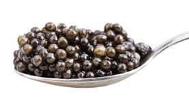 Seitenansicht des Löffels mit schwarzem Störkaviar Lizenzfreie Stockfotografie
