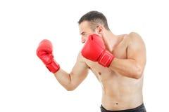 Seitenansicht des muskulösen erwachsenen Boxermannes bereit zu kämpfen Stockbilder