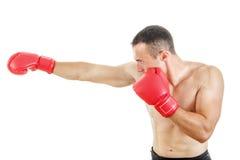 Seitenansicht des muskulösen Mannes rote Boxhandschuhe und das Lochen tragend stockfotos