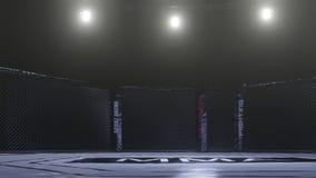 Seitenansicht Muttahida Majlis-e-Amal Arena Leerer Kampfkäfig unter Lichtern Wiedergabe 3d vektor abbildung