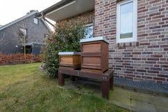 Seitenansicht von Bienenstöcken im Garten stockbilder