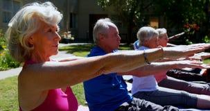 Seitenansicht von den älteren Leuten der aktiven Mischrasse, die Yoga im Garten des Pflegeheims 4k durchführen stock video
