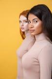 Seitenansichtbild von den starken jungen Damen, die Kamera betrachten stockbild