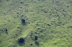 Seitenhintergrund des grünen Hügels lizenzfreie stockbilder