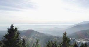 Seitenluftbrummenflug establisher über schneebedecktem Waldholz mit Bergen im Winter Schnee in der Gebirgsnatur draußen stock video