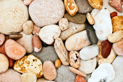 Seixo em uma praia Imagem de Stock Royalty Free
