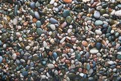 Seixo molhado colorido do oceano (fundo) Foto de Stock Royalty Free