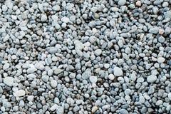 Seixo na praia Fotografia de Stock
