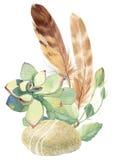 Seixo, penas e planta carnuda Imagens de Stock Royalty Free
