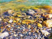 Seixos da água pouco profunda da costa do rio fotografia de stock royalty free
