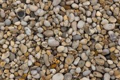 Seixos da praia Fotos de Stock Royalty Free