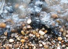 Seixos da praia do rio nas ondas Fotos de Stock Royalty Free