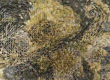 Seixos de pedra sortidos em cores diferentes Fotografia de Stock Royalty Free