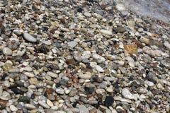 Seixos do mar, pedras coloridas na costa Imagens de Stock Royalty Free