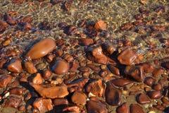 Seixos do Mar Vermelho Fotos de Stock Royalty Free