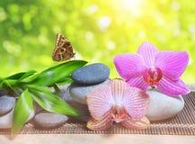Seixos do zen com folhas do bambu e flores da orquídea na tabela Imagem de Stock Royalty Free