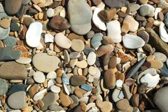 Seixos e conchas do mar da praia Imagem de Stock Royalty Free