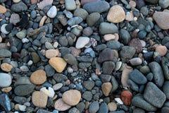 Seixos e escudos do mar em uma praia da telha fotografia de stock royalty free