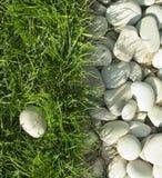 Seixos e grama verde Fotografia de Stock Royalty Free