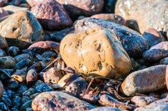 seixos em uma costa de uma ilha Imagens de Stock Royalty Free