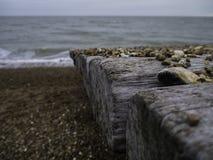Seixos em uma praia Imagens de Stock Royalty Free