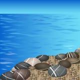 Seixos marinhos na praia Fotos de Stock