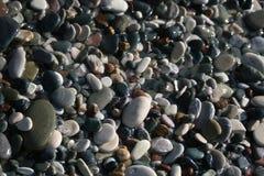 Seixos molhados em uma praia da telha imagens de stock royalty free
