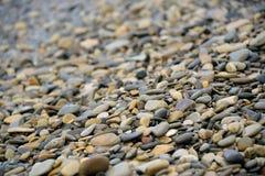 Seixos molhados na praia imagens de stock royalty free