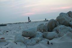 Seixos na praia Fotos de Stock