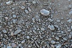 Seixos na praia preta da areia Fotografia de Stock