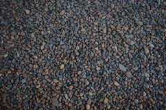Seixos & pedras Fotografia de Stock Royalty Free