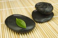 Seixos pretos do zen e folha verde imagem de stock