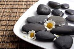 Seixos pretos e margaridas brancas na água Foto de Stock