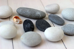 Seixos redondos cinzentos e brancos do mar na tabela de madeira com uma parte de shell Foto de Stock