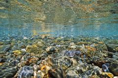 Seixos subaquáticos abaixo da superfície da água fotografia de stock