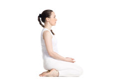 Seiza Stock Photography