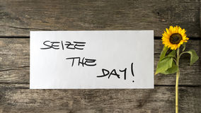 Seize the day message written on white card Royalty Free Stock Images