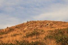 Seizoen van reis het Britse Colombia in de herfst om mooie daling-seizoen landschappen te zien! Royalty-vrije Stock Foto's
